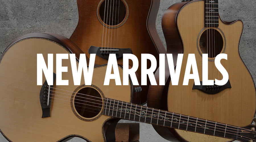 Taylor Guitars New Arrivals