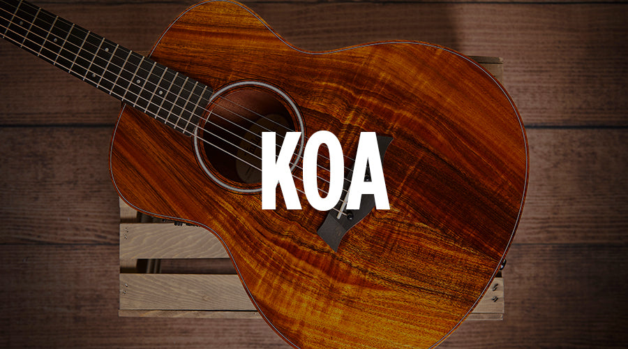 Koa Taylor Guitars