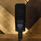 Audio Technica 4033 Condenser Mic With Box, Shockmount, Bag - Used
