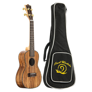 Amati's Snail Ukulele - Koa Concert With Bag