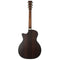 Martin GPC-16E Rosewood With Case