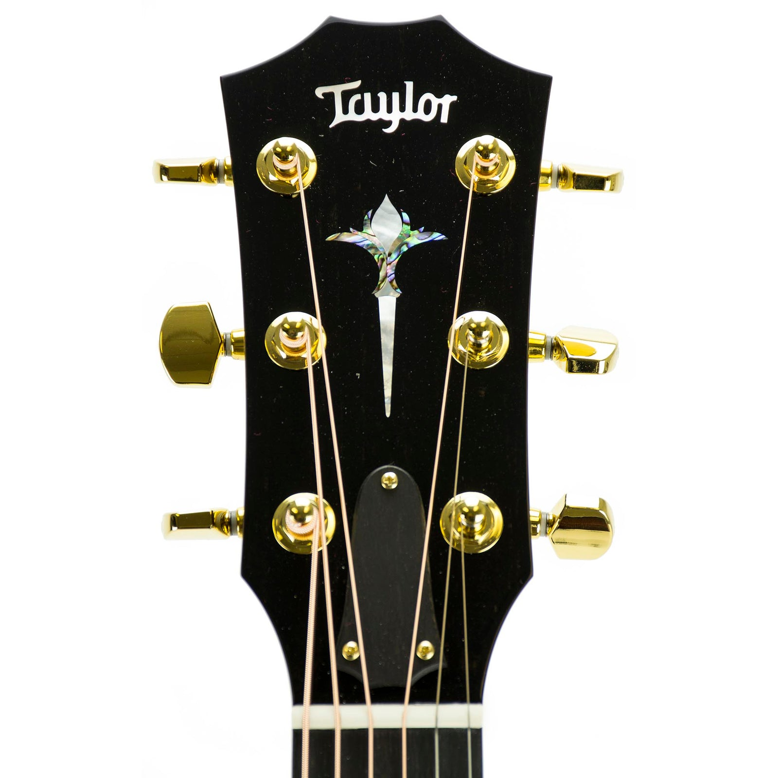 Taylor 2018 814CE Limited Cocobolo Singing Sitka, Namm Exclusive