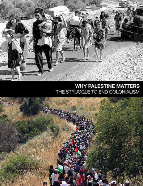 Why Palestine Matters, The Struggle To End Colonialism