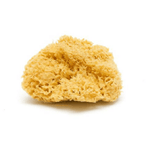 Dead Sea Sponges (Natural)