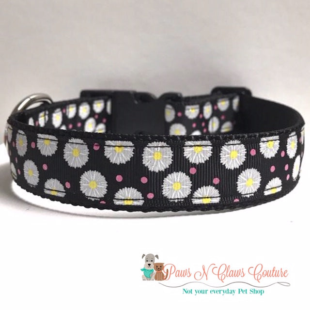"1"" Glitter Daisys on Black Dog Collar"
