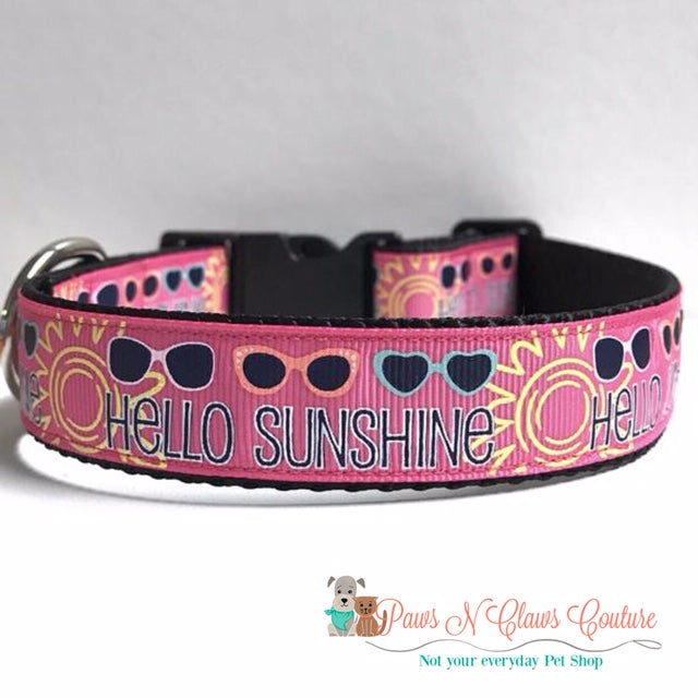 "1"" Hello Sunshine on Pink Dog Collar"