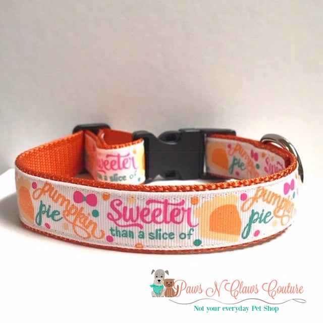 "1"" Sweeter than a Slice of Pumpkin Pie Dog Collar - Paws N Claws Couture"