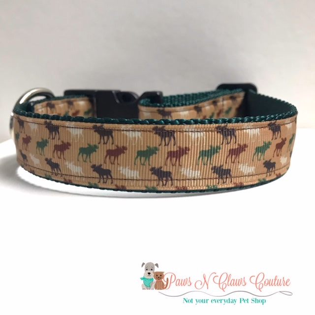 "1"" Mini Moose Dog Collar"