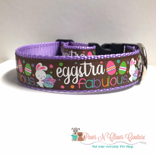 "1"" Eggstra-fabulous Dog Collar - Paws N Claws Couture"