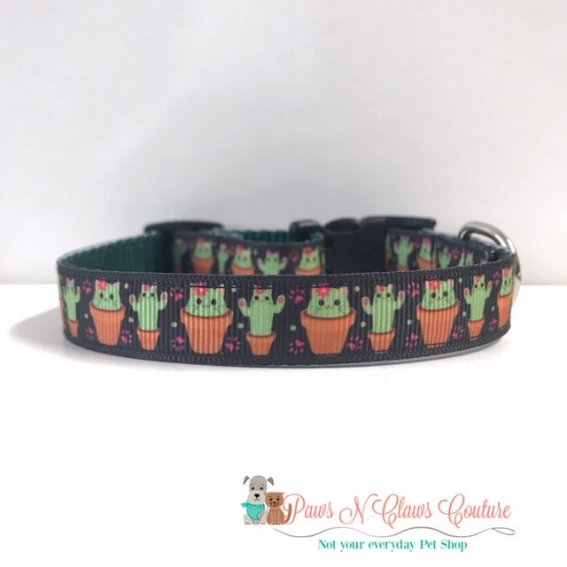 "5/8"" Cat-cus Dog Collar - Paws N Claws Couture"