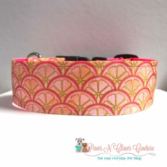 "1.5"" Citrus Dog Collar - Paws N Claws Couture"