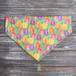 Spring Tulips Bandana - Paws N Claws Couture