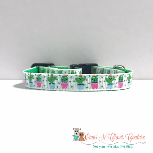 "3/8"" Mini Cactus Cat or Small Dog Collar"