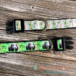 "1"" Panda or Bamboo Dog Collar, Leash Available - Paws N Claws Couture"