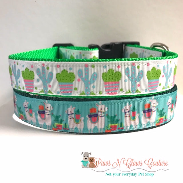 "1"" Glitter Cactus or Llamas on Teal Dog Collar"