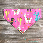 Reversible No Drama Llama and Cactus Bandana - Paws N Claws Couture
