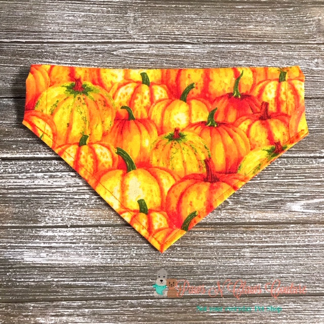 Pumpkin Patch Bandana - Paws N Claws Couture
