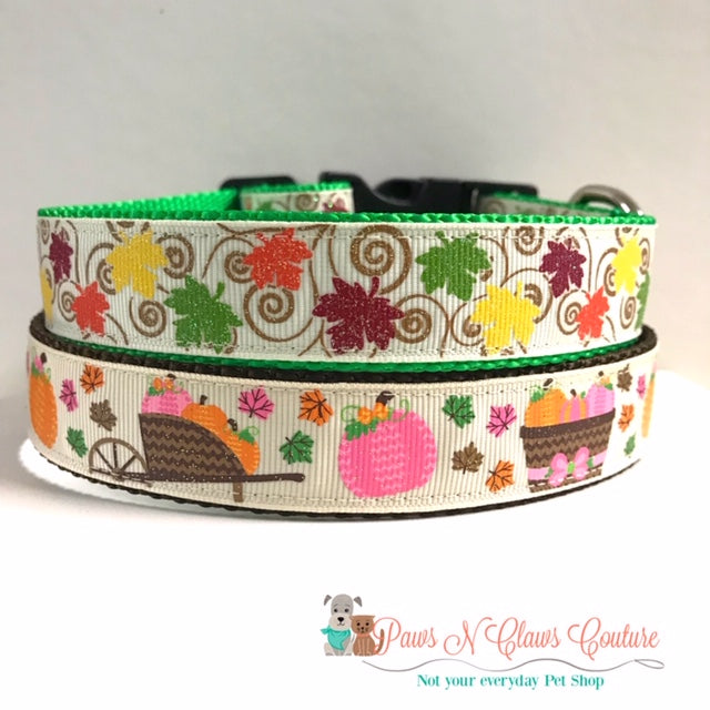 "1"" Pumpkin on Cream or Leaves Dog Collar, Pumpkin Leash Available"