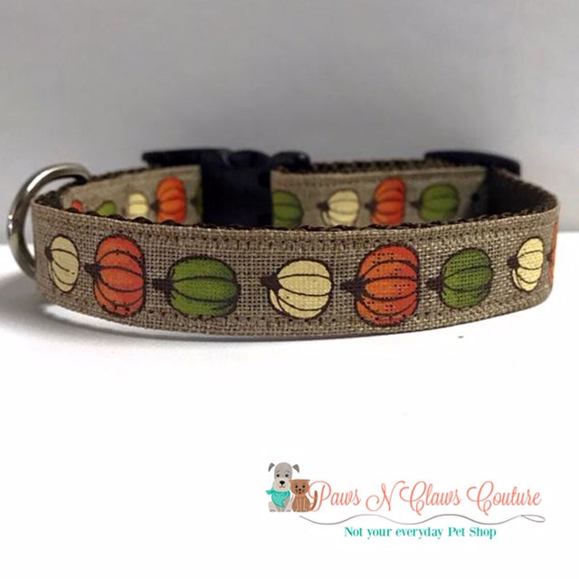 "5/8"" little Pumpkins Dog Collar - Paws N Claws Couture"