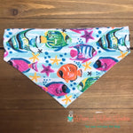 Tropical Fish and starfish Bandana - Paws N Claws Couture