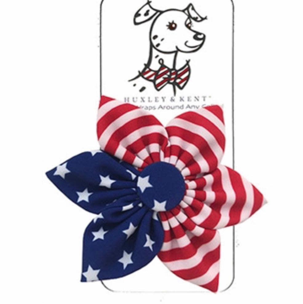 Liberty Pinwheel - Paws N Claws Couture