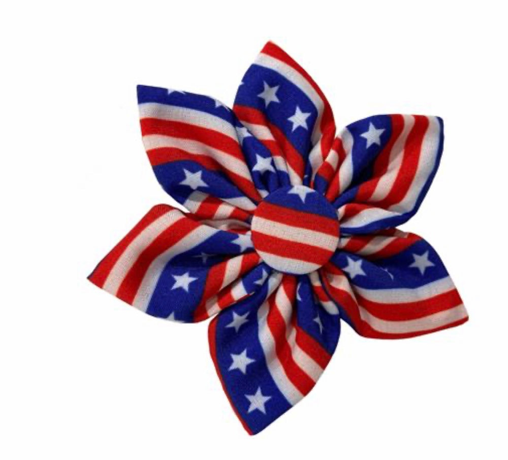 Stars & Stripes Pinwheel