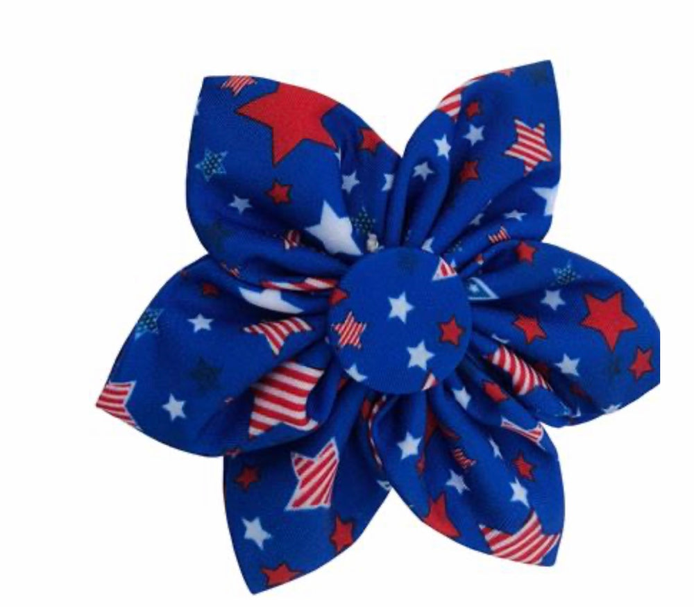 Boston Pops Pinwheel