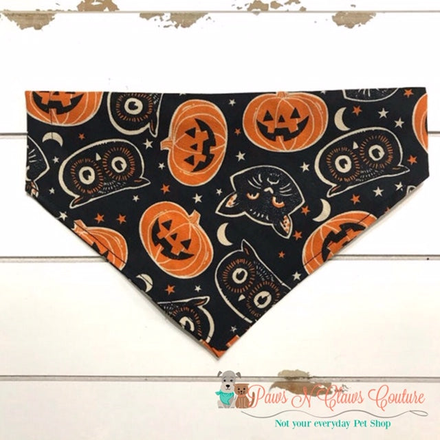 Cats, Owls, Pumpkins Bandana - Paws N Claws Couture