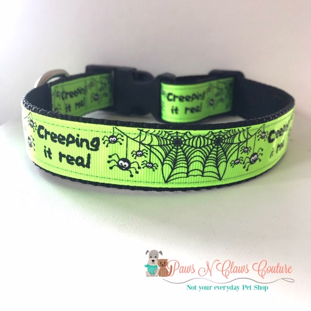 "1"" Creepin it Real, spiders Dog Collar - Paws N Claws Couture"