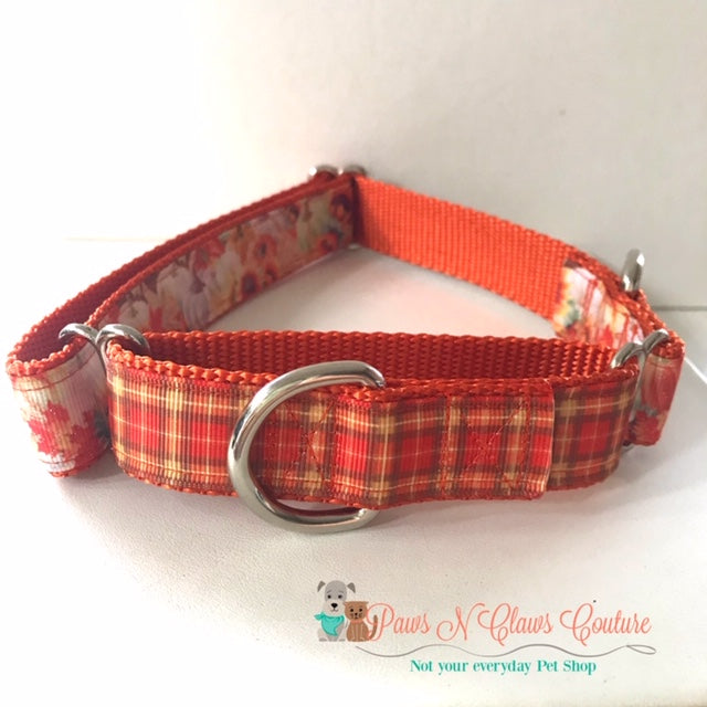 "1"" Fall Sunflowers & Pumpkins Martingale Dog Collar, Leash Available - Paws N Claws Couture"