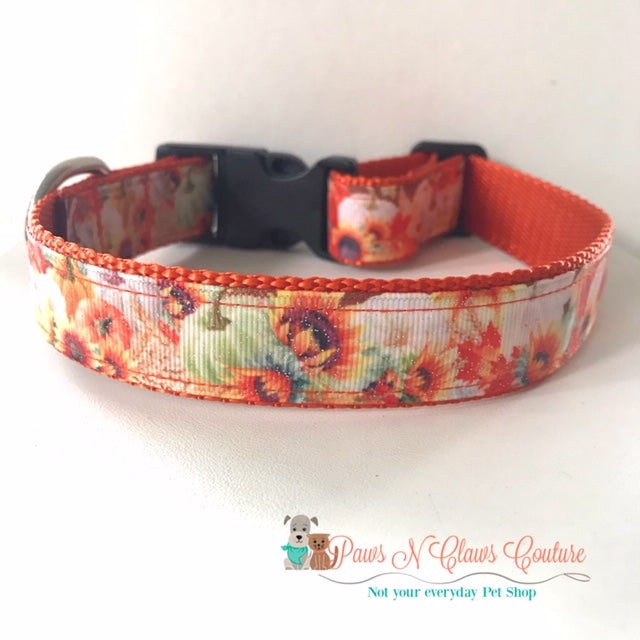 "1"" Glitter Pumpkins and Sunflowers Dog Collar, Leash Available"