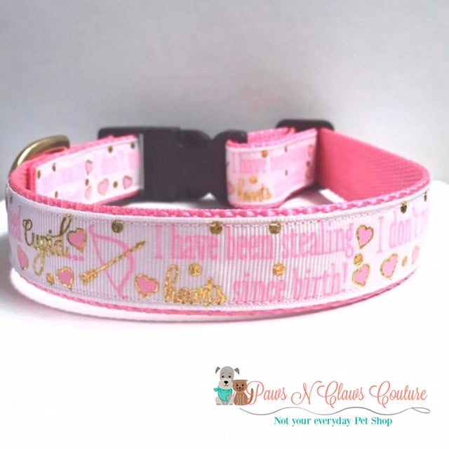 "1"" Stealing Hearts since birth Dog Collar - Paws N Claws Couture"