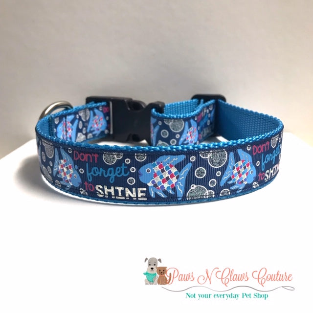 "1"" Don't forget to Shine Dog Collar - Paws N Claws Couture"