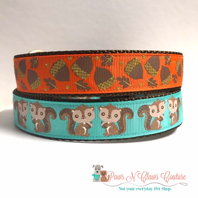 "1"" Acorns or Squirrels Dog Collar"