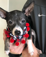 Chalkboard hearts with poms Bandana - Paws N Claws Couture