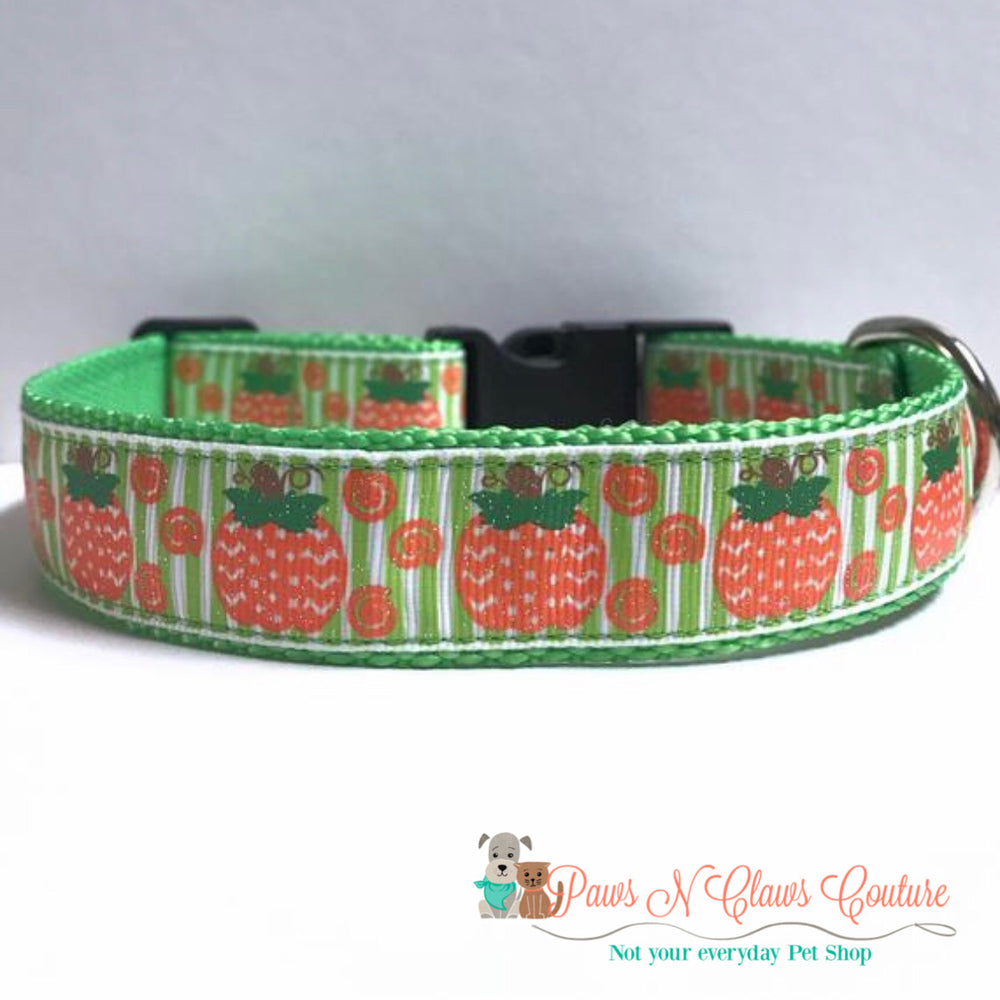 "1"" Chevron pumpkin and green stripes Dog Collar - Paws N Claws Couture"