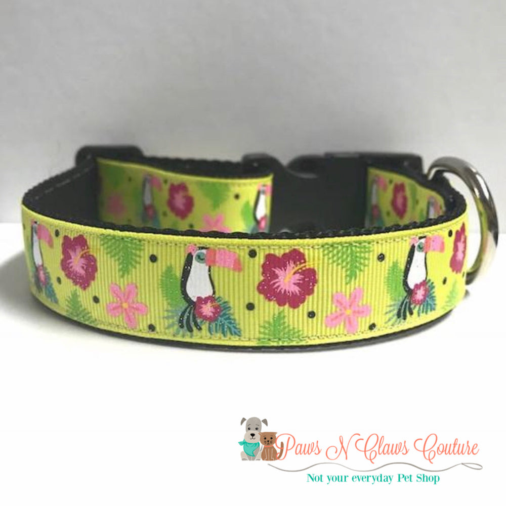 "1"" Tropical Toucan and flowers Dog Collar - Paws N Claws Couture"
