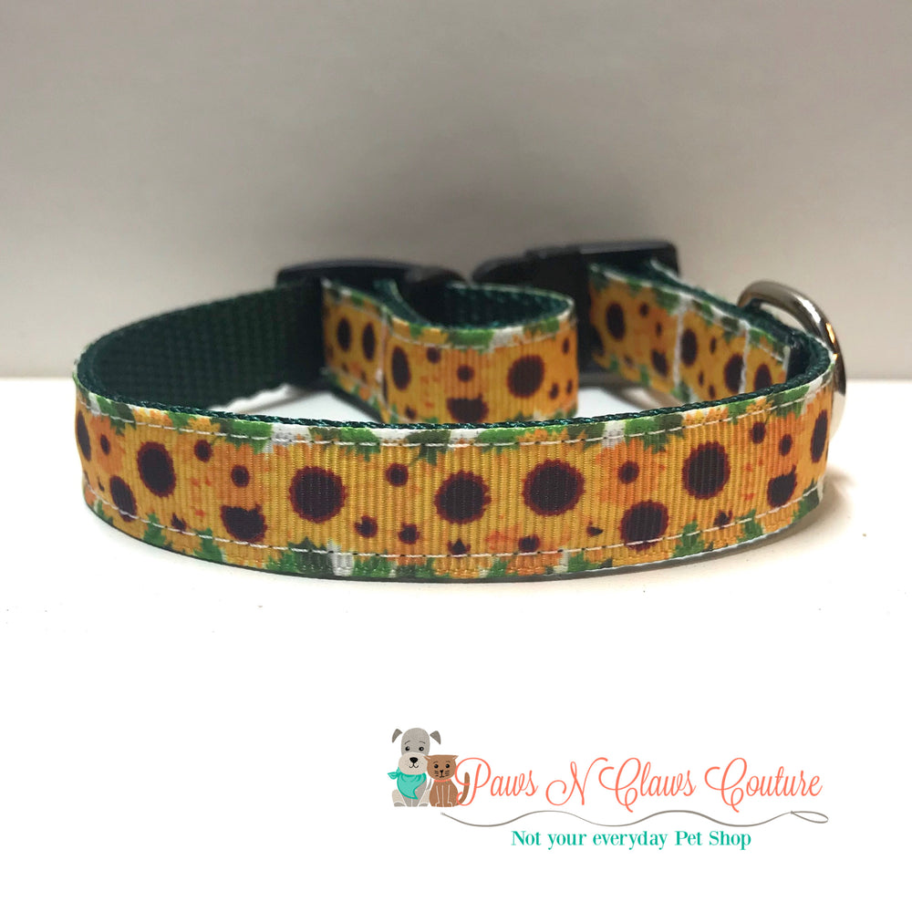 "5/8"" Sunflower bursts Dog Collar - Paws N Claws Couture"
