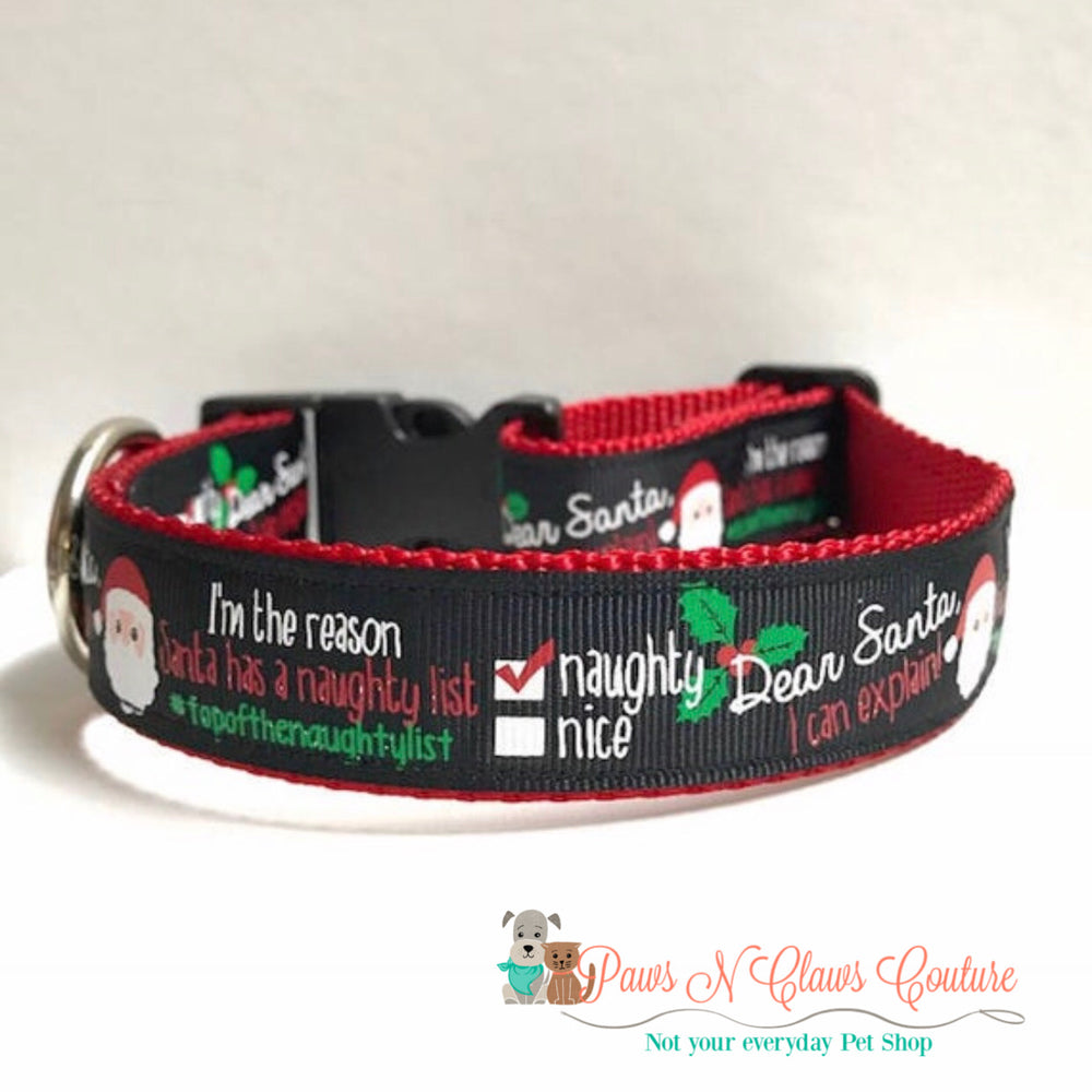 "1"" I'm the reason Santa has a naughty list Dog Collar - Paws N Claws Couture"