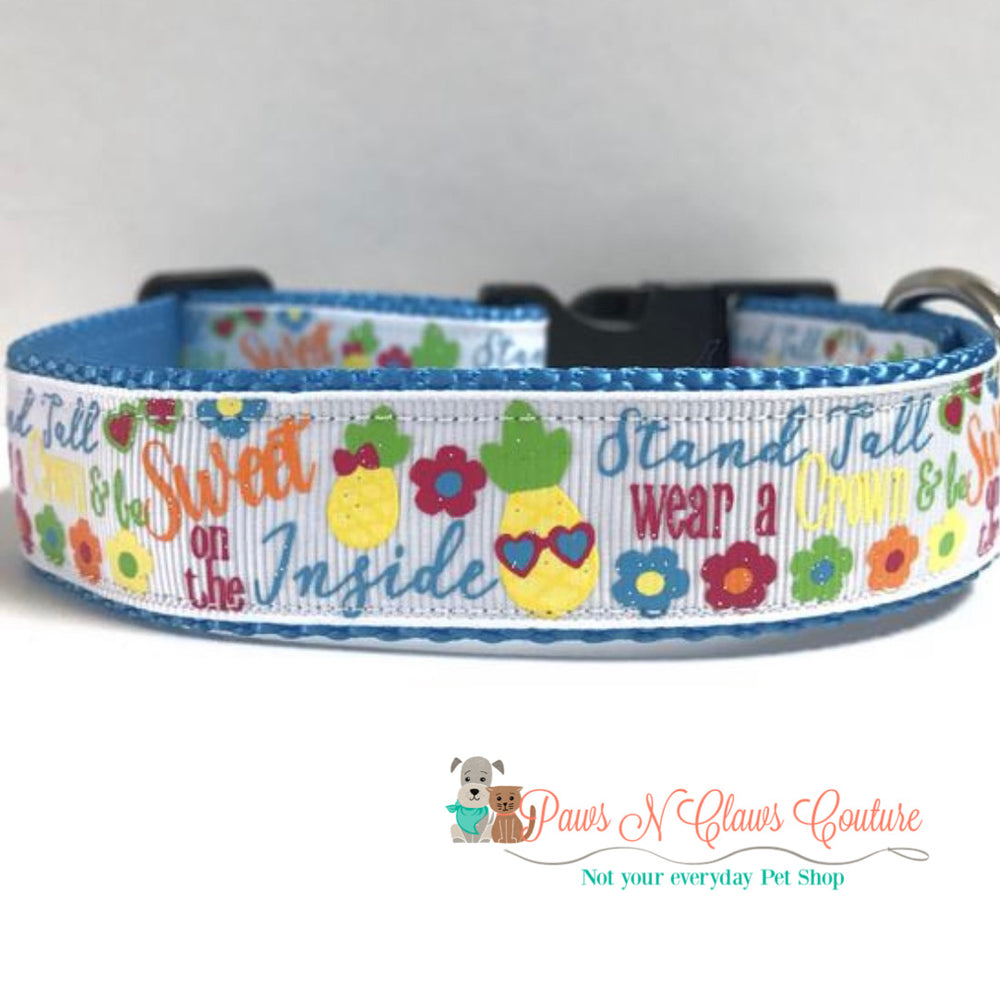"1"" Stand tall, Pineapple Dog Collar"