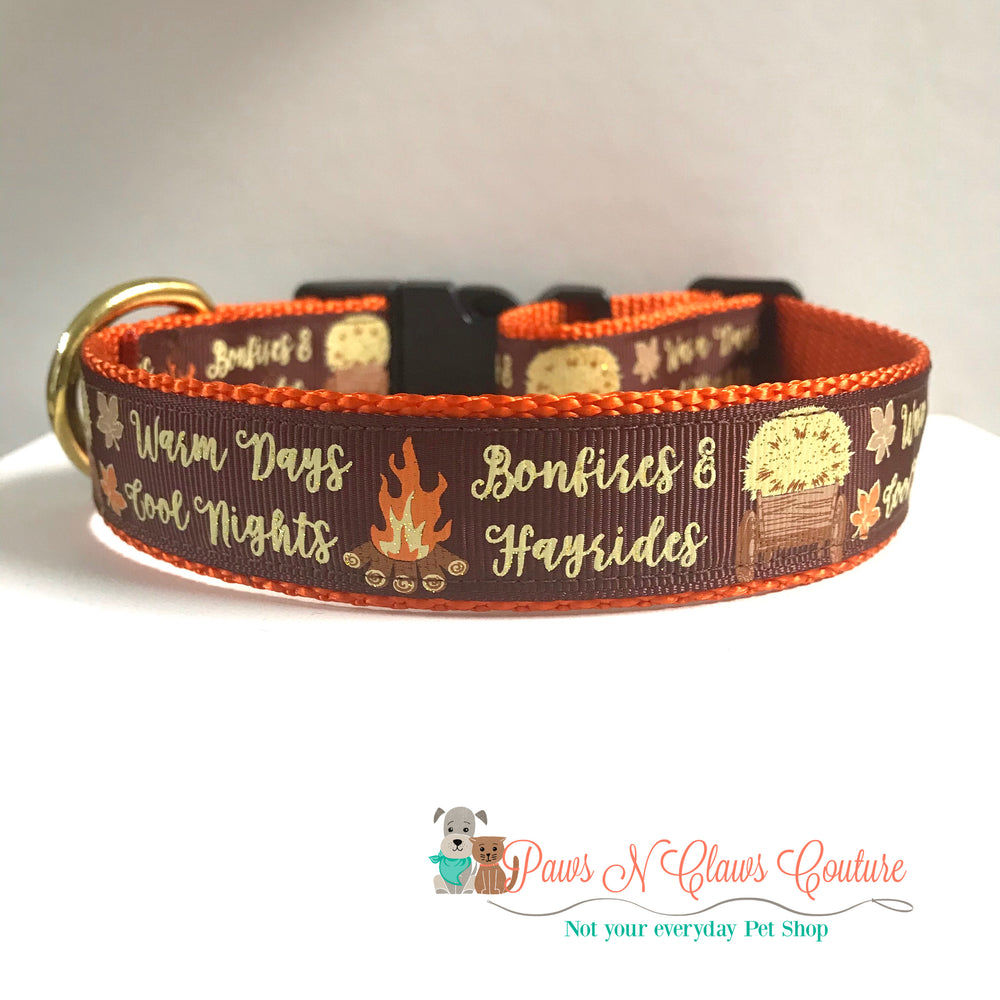 "1"" Warm days, cool nights Dog Collar - Paws N Claws Couture"