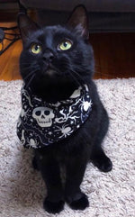 Skeleton and moon Bandana - Paws N Claws Couture