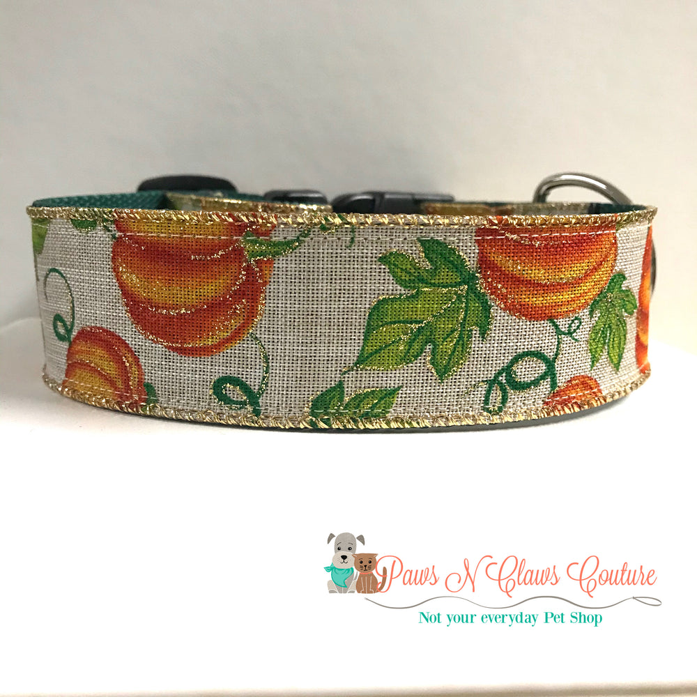 "1.5"" Pumpkins on burlap Dog Collar - Paws N Claws Couture"