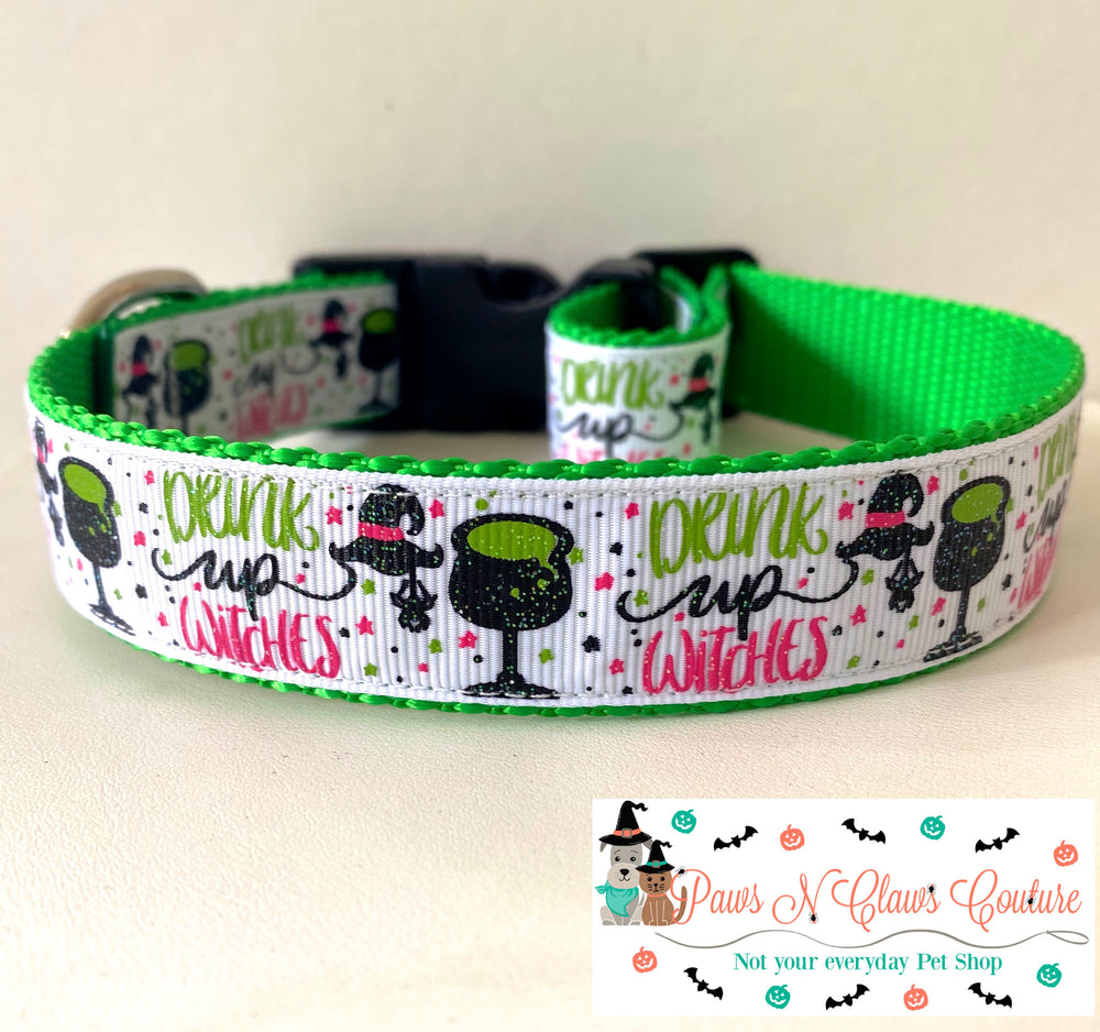 "1"" Drink up Witches Dog Collar - Paws N Claws Couture"