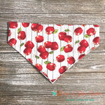 Plank apples Bandana - Paws N Claws Couture