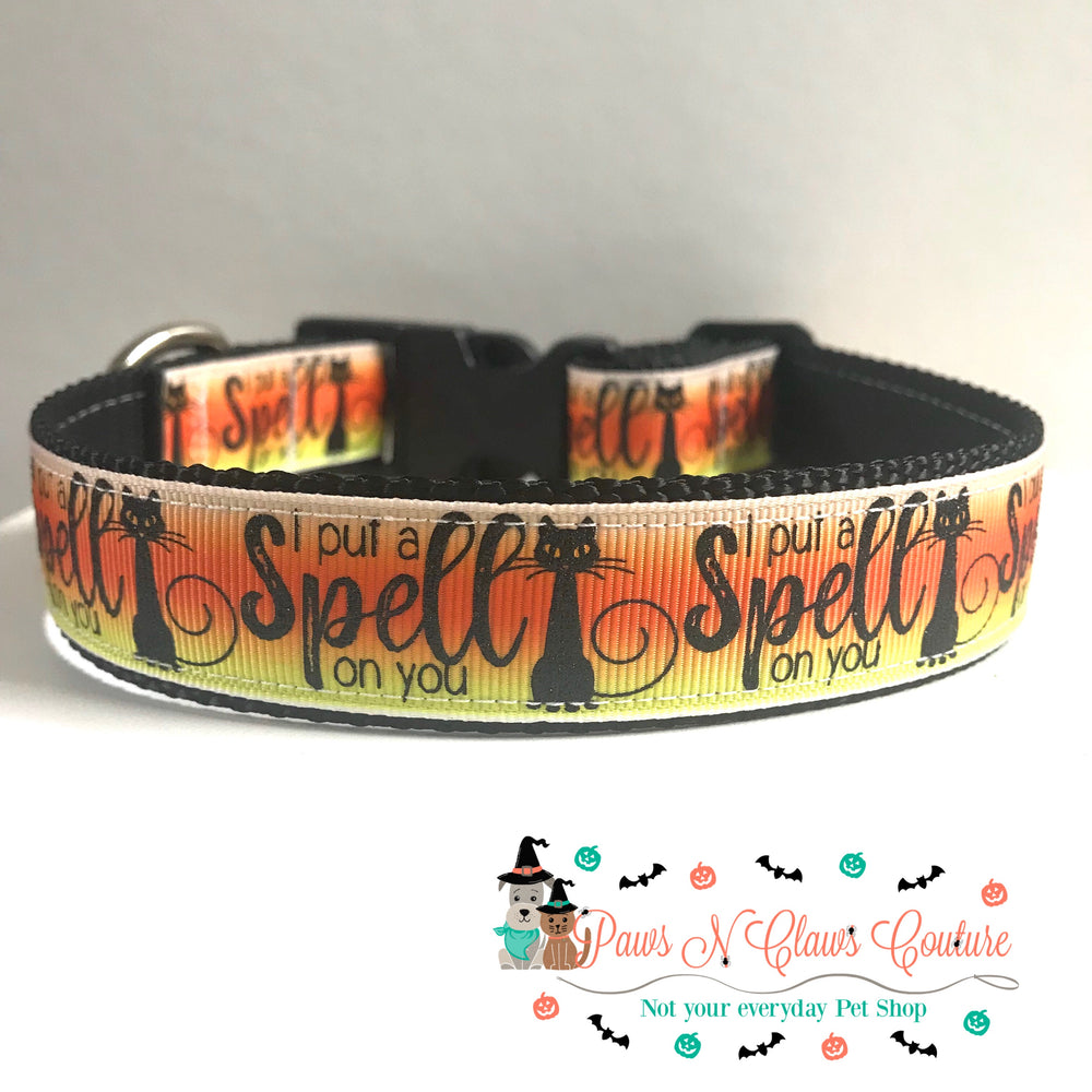 "1""  bats or spell Dog Collar - Paws N Claws Couture"