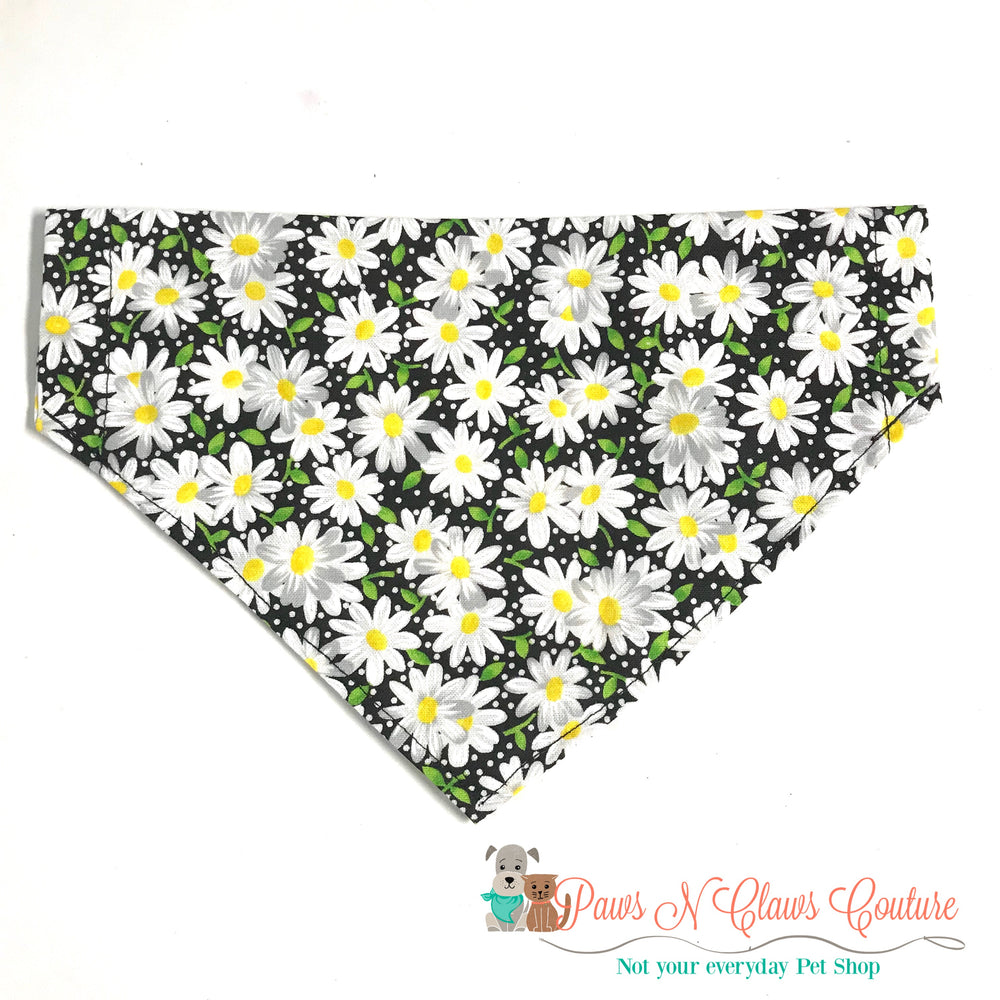 Daisy's on black Bandana - Paws N Claws Couture
