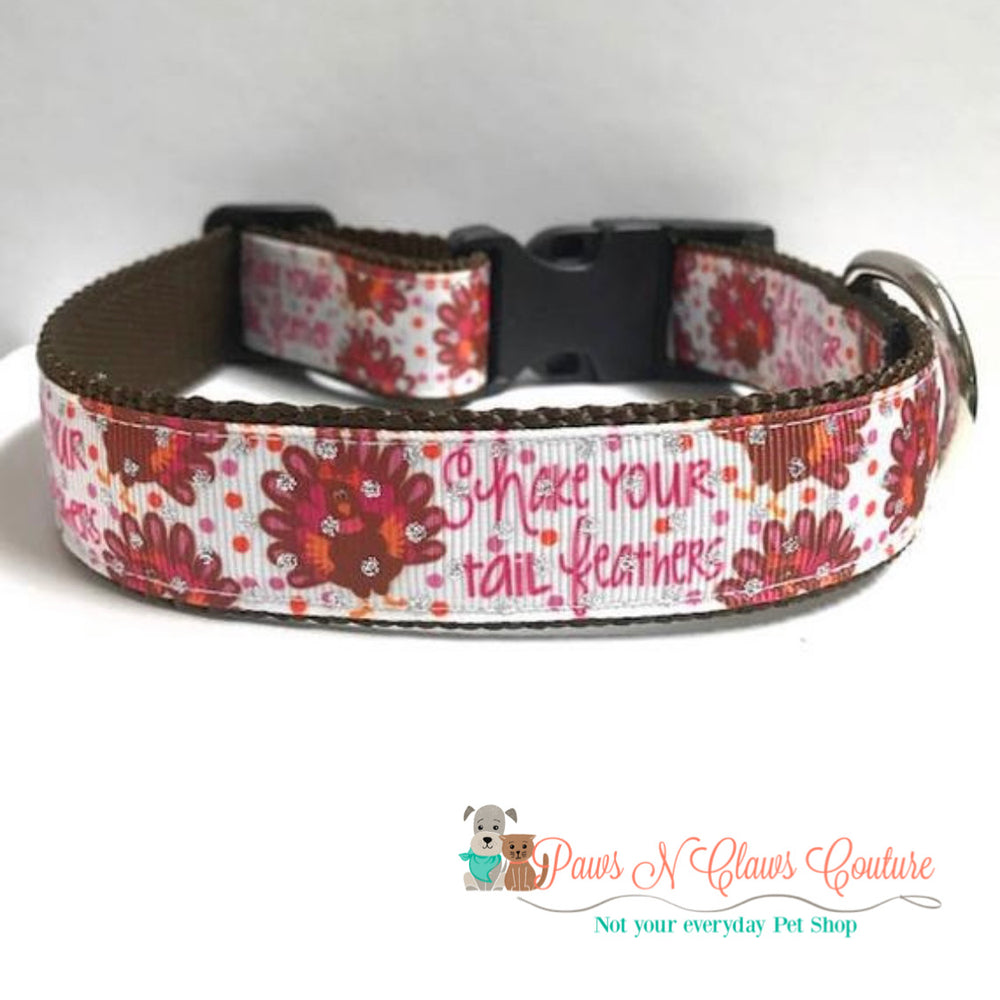 "1"" Shake your tail feather Dog Collar - Paws N Claws Couture"