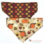 Reversible Leaves, sunflowers and Pumpkin Bandana - Paws N Claws Couture