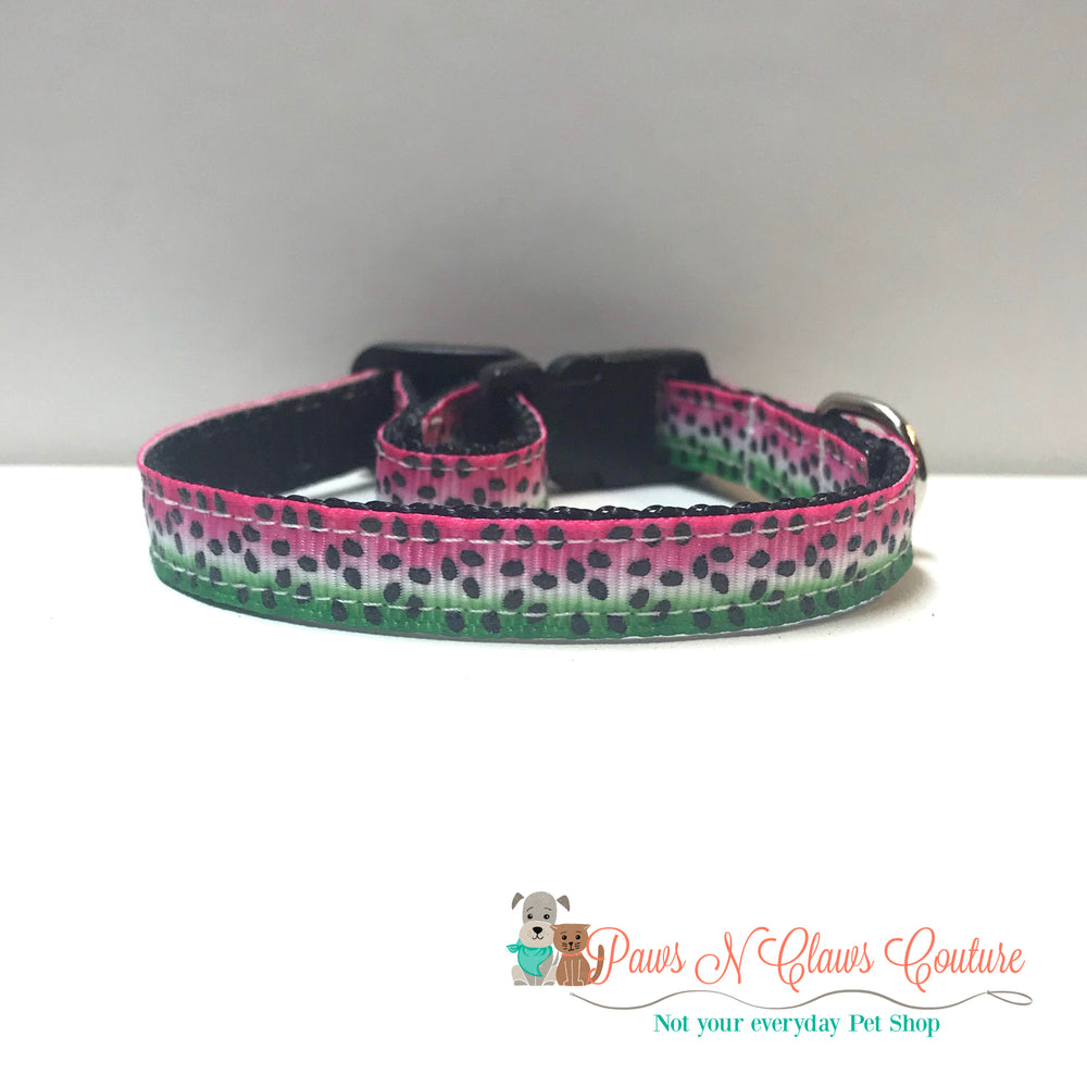 "3/8"" Watermelon seeds Cat or Small Dog Collar - Paws N Claws Couture"